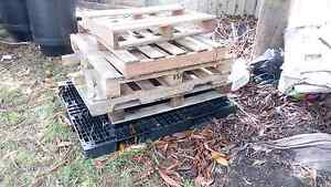 Free Pallets Casula Liverpool Area Preview