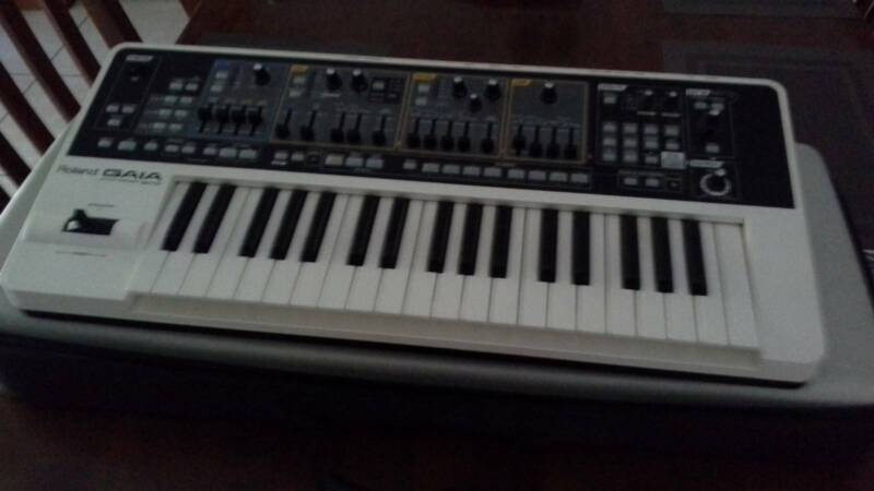 Synthesizer Roland Gaia Sh 01 With Storage Carry Case