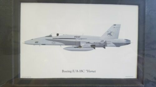 USN F/A-18C Hornet Illustrated Aviation Print VFA-81 Sunliners Matte Frame 10x8