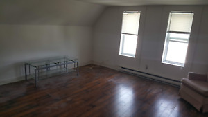 Small one bedroom apartment for rent in west side -375$