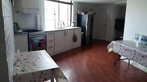 Room For Rent - Clarinda Clarinda Kingston Area Preview