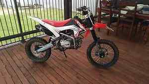 Thumpstar 140cc Collie Collie Area Preview