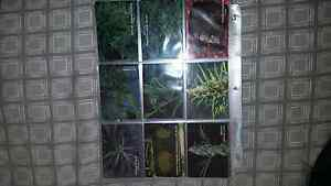 Collector cards Greenwith Tea Tree Gully Area Preview
