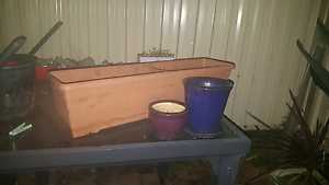 Group lot of 3 pots Wollongong Wollongong Area Preview