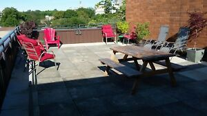 Roof Top Patio!  1 bedroom in South end Halifax!