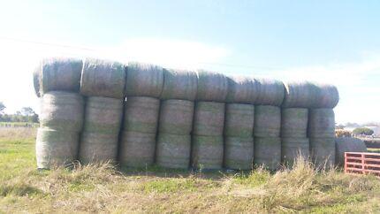 SSS forage 4x4 round bales and 4x4 rhodes grass