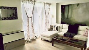 Fully Furnished Condo Downtown Montreal $1050 Dec 1st