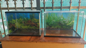 2 fish tanks starter pack Cooloongup Rockingham Area Preview