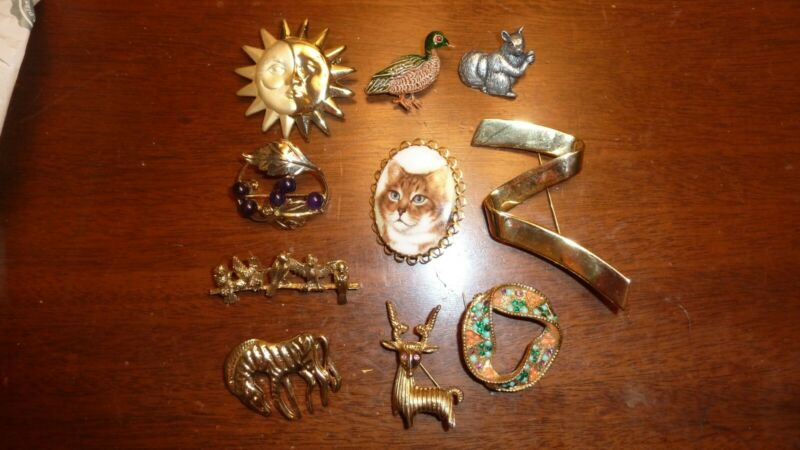 Lot of 10 vintage costume jewelry pins