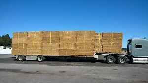 Large Squares wheat Straw For Sale Kawartha Lakes Peterborough Area image 1