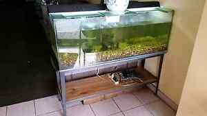 $200 OBO Fish Tank Aquarium with Accessories Bexley Rockdale Area Preview