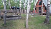 WhiteBear Lake Cabin For Sale / possible rent in Summer