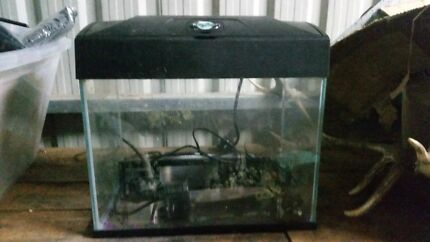 BLUE PLANET fishtank with filter & light, like new Whiteside Pine Rivers Area Preview