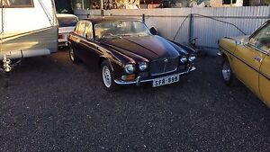 Jaguar XJ series 1 with 350 307 chev conversion Whyalla Whyalla Area Preview