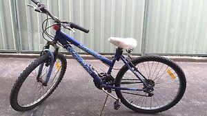 Used female size bicycle Campsie Canterbury Area Preview