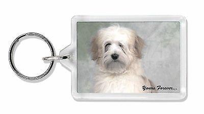 Tibetan Terrier 'Yours Forever' Photo Keyring Animal Gift, AD-TT1yK