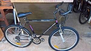 Mens Large Mountain Bike Elizabeth Playford Area Preview