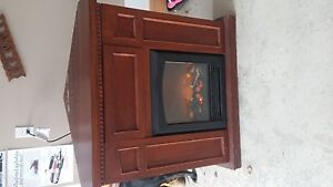 Electric fireplace. Great condition