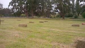 Hay - Grass small squares Burnie Burnie Area Preview