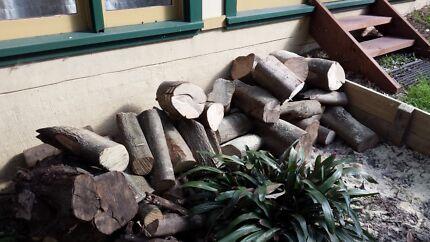 Free firewood Randwick Eastern Suburbs Preview