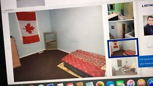 Three bedrooms for rent