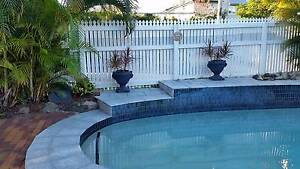 Downsizing: Established large pots for pool or patio Graceville Q Graceville Brisbane South West Preview