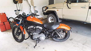 Bargain Price Harley! > Ride it Home Today! Wonga Cairns Surrounds Preview