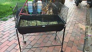 Rabbit cage Junortoun Bendigo City Preview