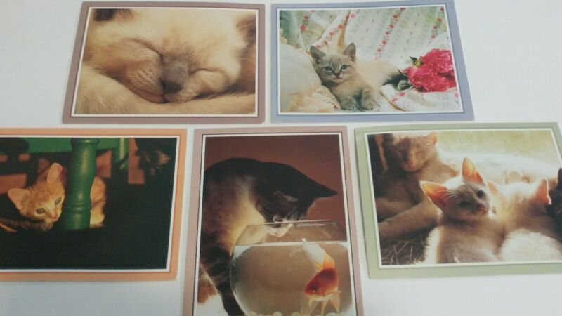 Vintage Cat Kitten Blank Greeting Cards Lot of 5 with Envelopes The Picture Cube