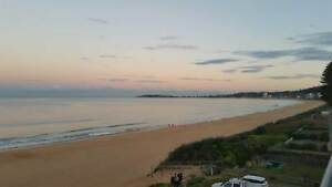 Xmas on Narrabeen Beach in Absolute Beachfront Penthouse