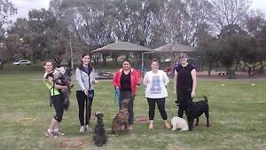 Workout with your dog Modbury Tea Tree Gully Area Preview
