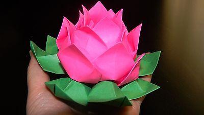 Origami Lotus Flower-pink (Lotus Origami)