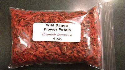 1 Oz   Wild Dagga Flower Petals  Leonotis Leonurus