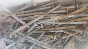 Free screw , used bricks and kitten home Langford Gosnells Area Preview