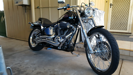 Harley Davidson softail custom like new
