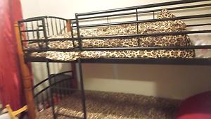 Bunk Beds & mattresses Holmview Logan Area Preview