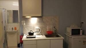 Granny flat/Studio mins walk to Macquarie Uni Marsfield Ryde Area Preview