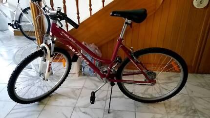 Womens AVICO EXPLOTT bike