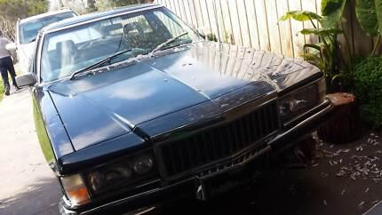 1982 Holden Ute Ute Wandin North Yarra Ranges Preview
