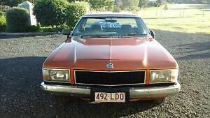 1981 WB Holden V8 Ute Gladstone Gladstone City Preview