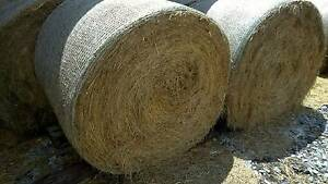 Good Quality Meadow Hay Hahndorf Mount Barker Area Preview