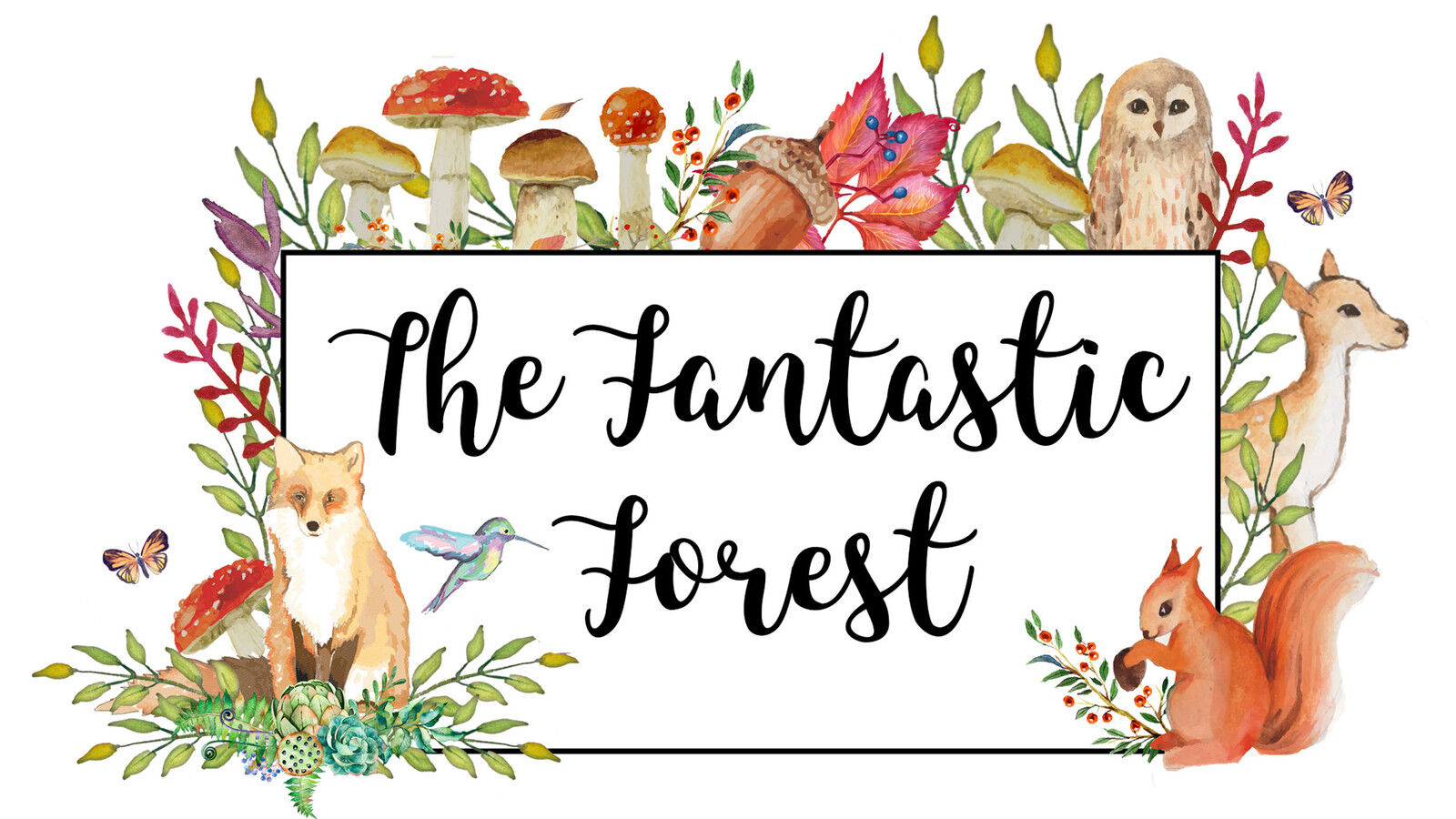 The Fantastic Forest