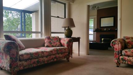 2 x 2 seated sofas