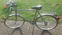 Hercules Alassio Fahrrad Cityrad 28er Brandenburg - Kremmen Vorschau