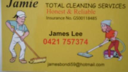 Korean cleaning team