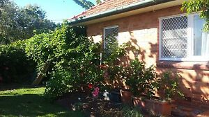 Free electricity in charming 3 bedroom double brick home with A/C Margate Redcliffe Area Preview