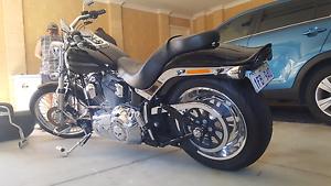 Harley Davidson Softail Huntingdale Gosnells Area Preview