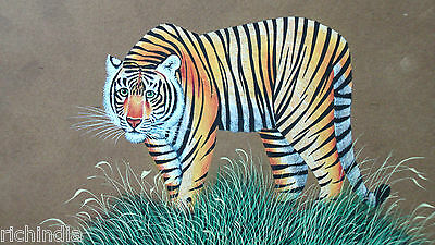 Bengal Tiger India Animal Wild life Miniature Painting  Art Handmade Forest Live