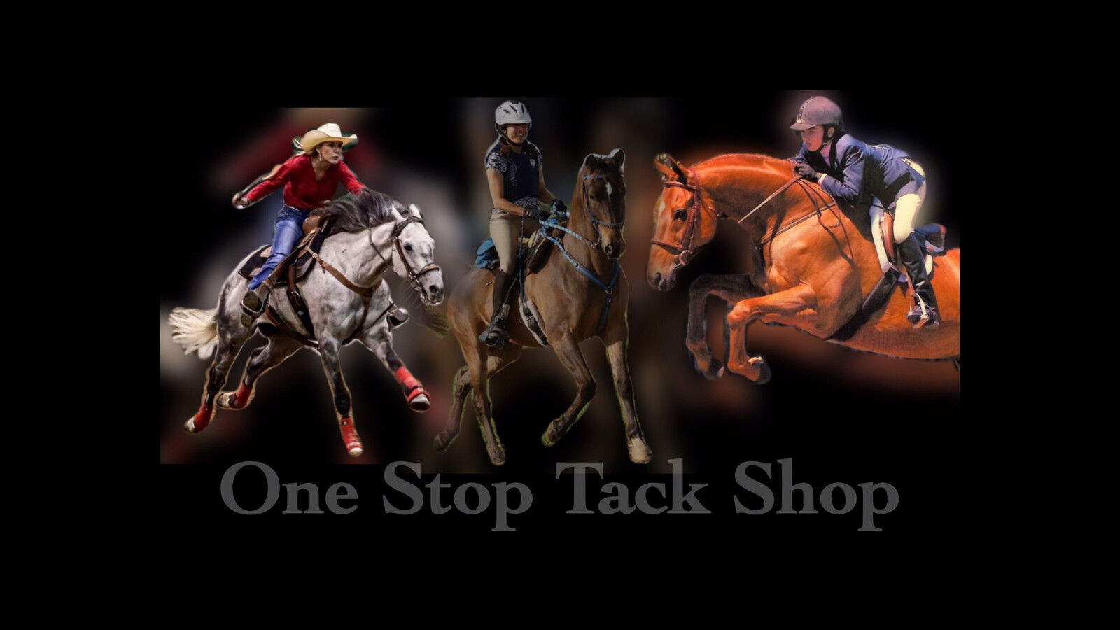 One Stop Tack Shop