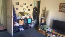 Cool housemates wanted for master bedroom in Fitzroy North Fitzroy North Yarra Area Preview